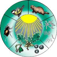 zoocenosis